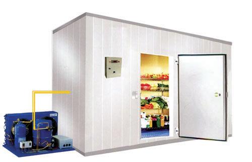 Celle frigorifere per frutta, perché sono importanti e come utilizzarle