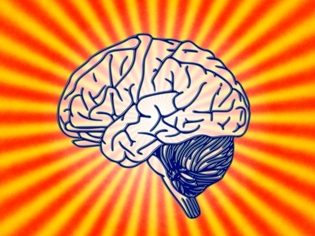 Studiare Psicologia a Lecce in modalità e-learning