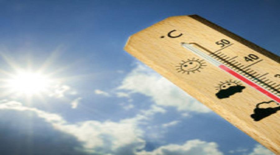 Come combattere il gran caldo: alcuni validi consigli