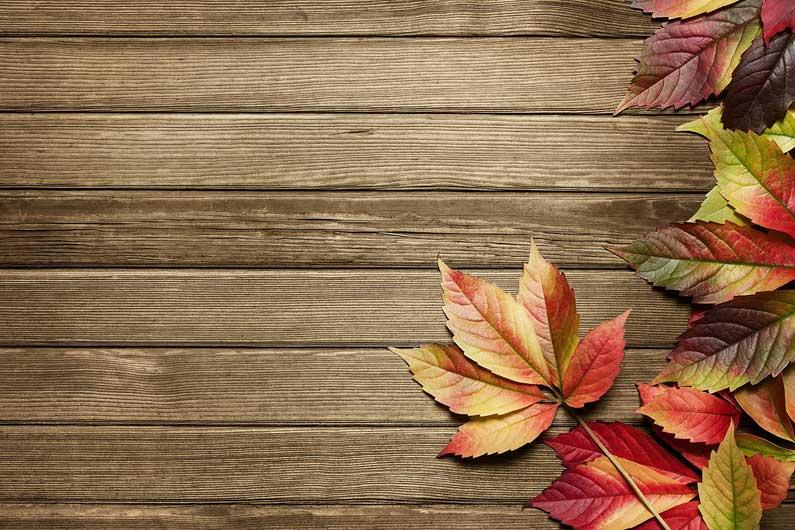 Le nuove tendenze di design per l'autunno
